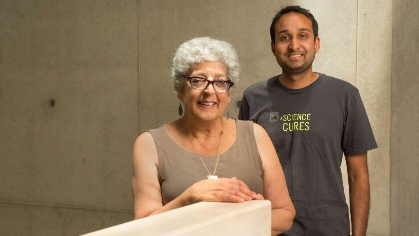 From left: The Salk Institute's Joanne Chory and Saket Navlakha