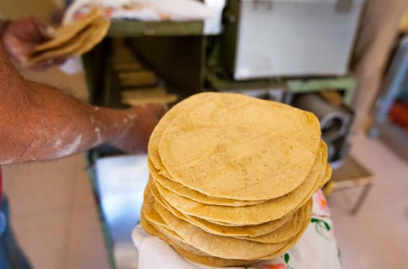 Fotografía cedida hoy miércoles, que muestra tortillas hechas de cebada en Ciudad de México (México). EFE/IPN/SOLO USO EDITORIAL