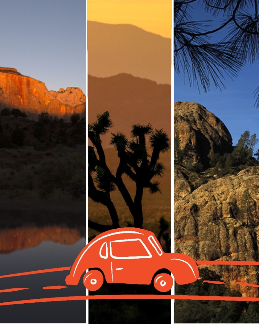 Joshua Tree, Zion and Pinnacles each offer unique national park experiences for travelers