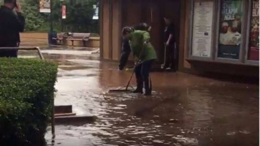 Still shot from video clip of the Old Globe Theatre plaza during recent flooding.