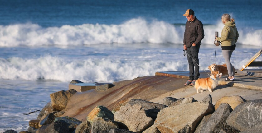 Mark and Shannon Finnigan of Oceanside, with their dogs, Rugby and Cody, watch the King Tide waves.
