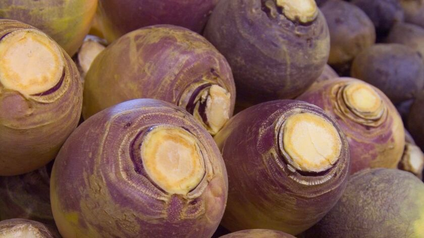 Rutabagas resemble turnips, but they are usually larger, with a slightly yellow hue in addition to purple skin.