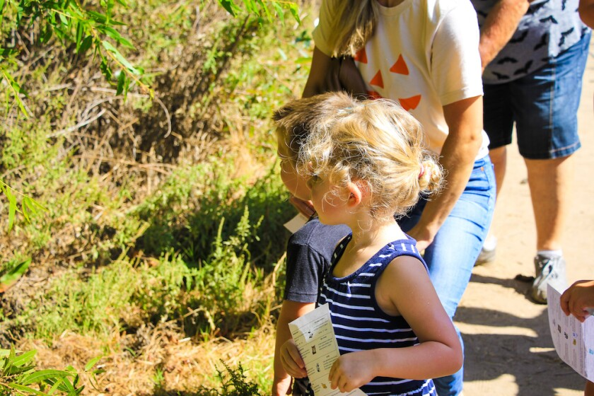 The Not So Scary Fall Festival will be held at San Dieguito County Park on Oct. 17.