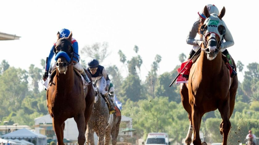 California Chrome with jockey Victor Espinoza race to victory in the Awesome Again Stakes at Santa Anita on Oct. 1.