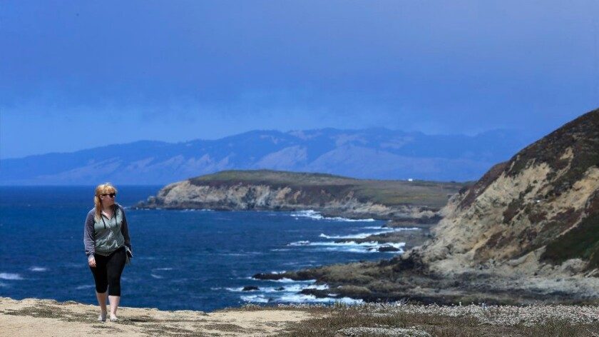 A visitor hikes along a bluff at Bodega Head, on the Sonoma County coast