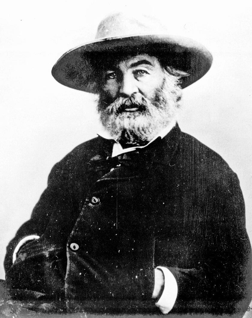 American poet Walt Whitman, in an undated portrait.