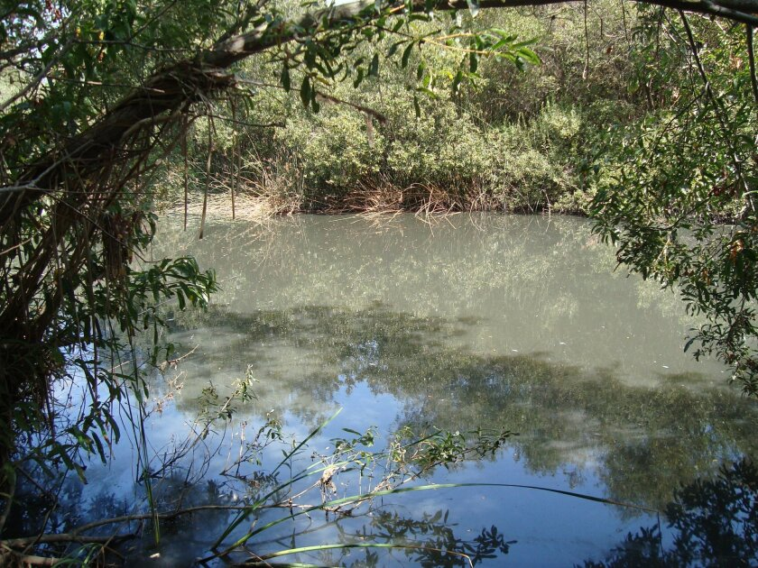 A major sewage spill into Los Penasquitos Lagoon turned the water murky after the Sept. 8 regional blackout. San Diego has unveiled a plan to provide backup power at sewage pump stations that failed during the outage.