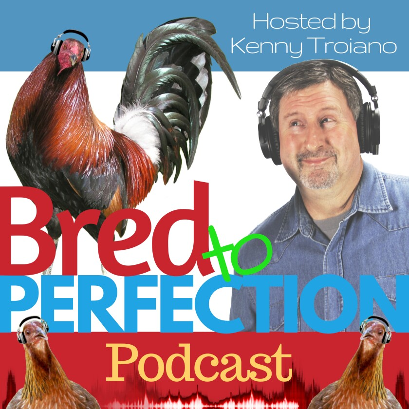 Copy - Podcast Show Cover.jpg