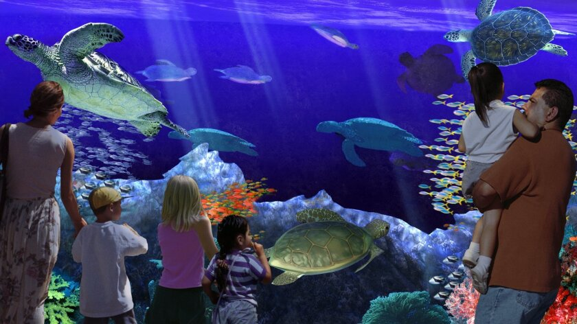 An artistic rendering of the new SeaWorld attraction Turtle Reef, which will open June 18 and highlight sea turtles.