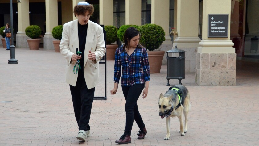 Vladae Roytapel and Jasmin Loza practice walking Mona, the German Shepherd without a leash during a