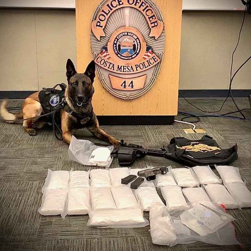 Police K-9s helped recover approximately 20 pounds of methamphetamine.