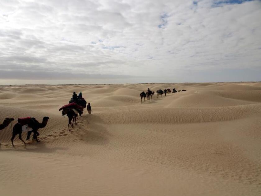 Un grupo de turistas se internan en el desierto de Douz, en el sur de Túnez. EFE