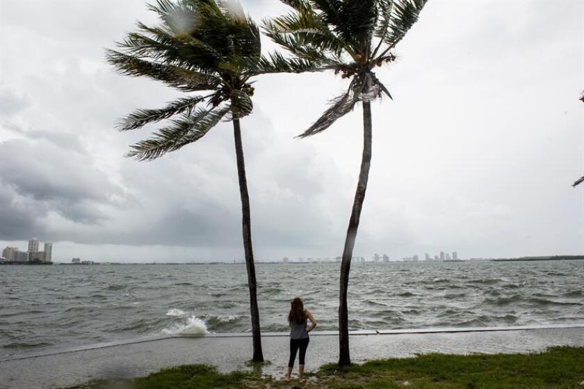 La depresión tropical 14 se ha formado en el Mar Caribe, y es posible que se convierta en un débil huracán antes de tocar tierra en Florida a mediados de esta semana, dijo hoy el Centro Nacional de Huracanes (NHC). EFE/Archivo