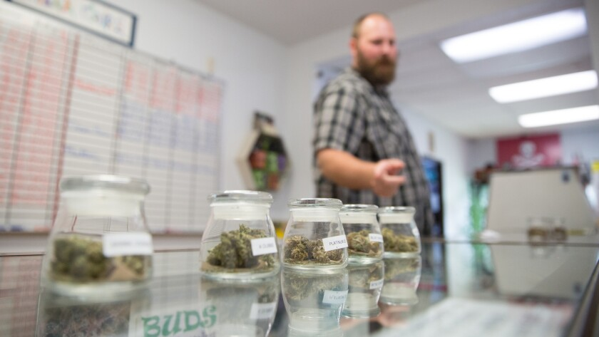 Donald Davies is a consultant at Canna Care, a dispensary in Sacramento.