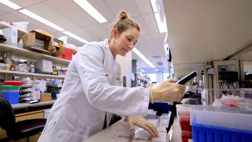 In a lab at Ionis Pharmaceuticals scientist Bethany Fitzsimmons uses a multi-channel pipette to place cells in a culture plate to study.