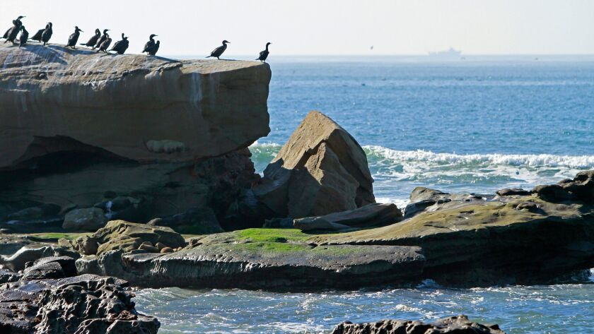 The arch on the famous Bird Rock in La Jolla collapsed during recent storms, shown here on Friday, D
