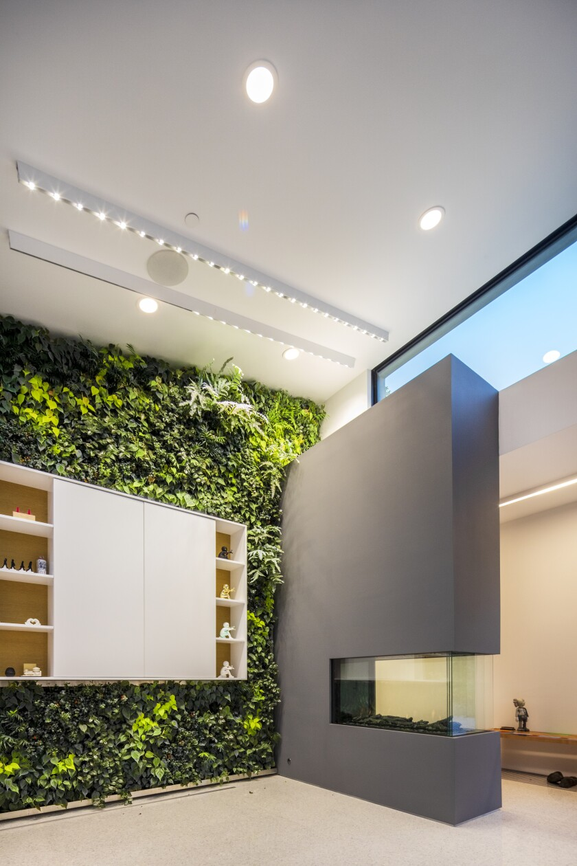 A closer look at the living wall.