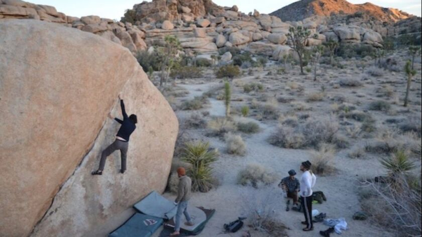 Joshua Tree National Park's many granite formations make it a popular destination for climbers and others. Visitors are taking advantage of free entrance.