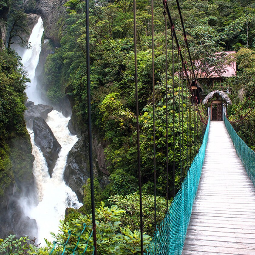 The Ecuador Highlights tour includes a trip to the tropical rainforest in the Amazon.