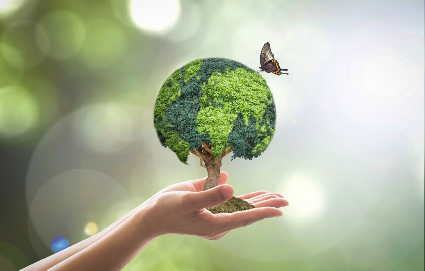 Environmental conservation, world wood day and sustainable envir