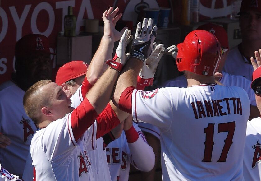 Los Angeles Angels' Mike Trout, left, congratulates Chris Iannetta, right, along with other teammates after he hit a solo home run during the eighth inning of a baseball game, Sunday, Aug. 31, 2014, in Anaheim, Calif. The Angels won 8-1. (AP Photo/Mark J. Terrill)