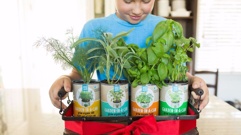 Back to the Roots Garden-in-a-Can