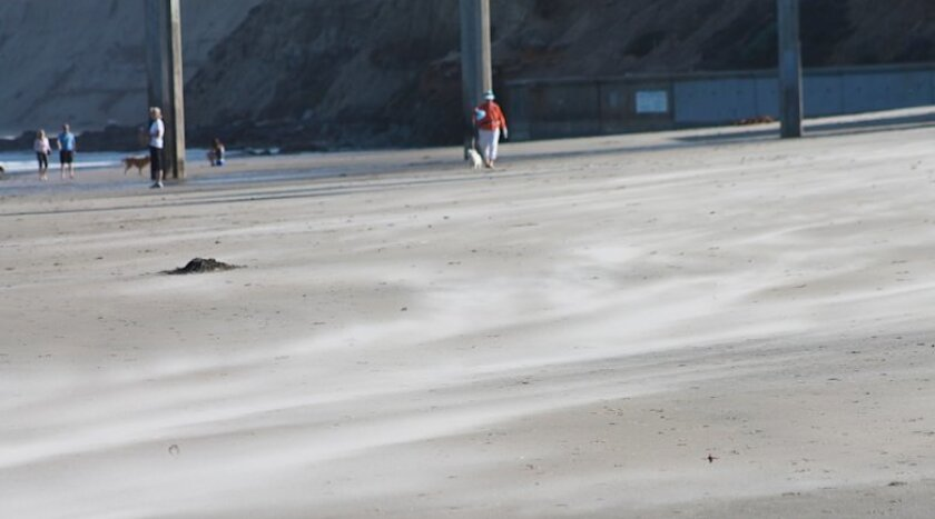 Santa Ana winds blow sand across the beach Wednesday at Scripps Pier.
