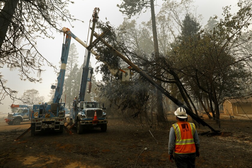 A judge wants PG&E to hire more tree trimmers to prevent deadly blazes, such as the Camp fire, which destroyed the town of Paradise.