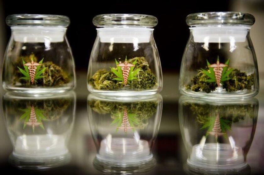 Marijuana raids