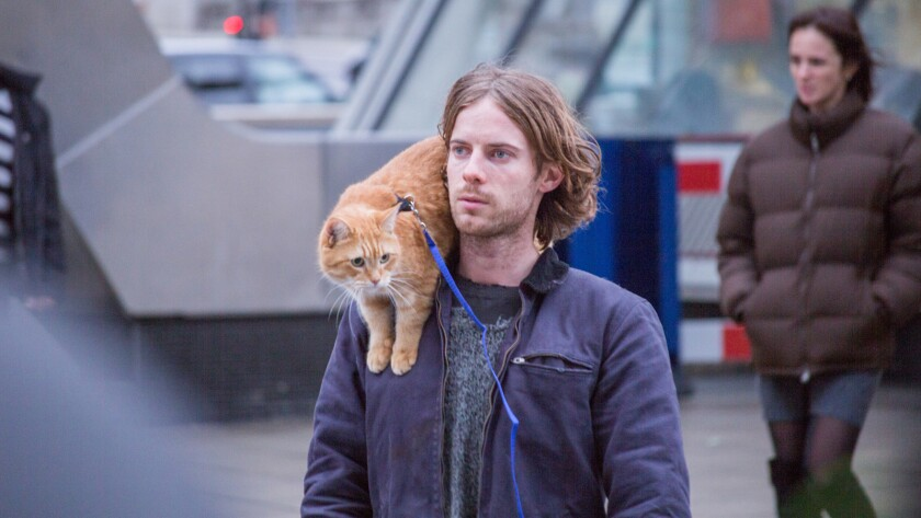 'A Street Cat Named Bob'