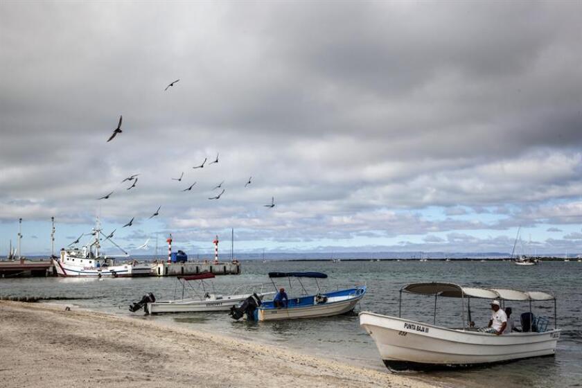 Olivia se intensificó a huracán categoría 1 en la escala Saffir-Simpson lejos de las costas del Pacífico mexicano, y por su lejanía no afecta al país, informó hoy el Servicio Meteorológico Nacional (SMN). EFE/Archivo