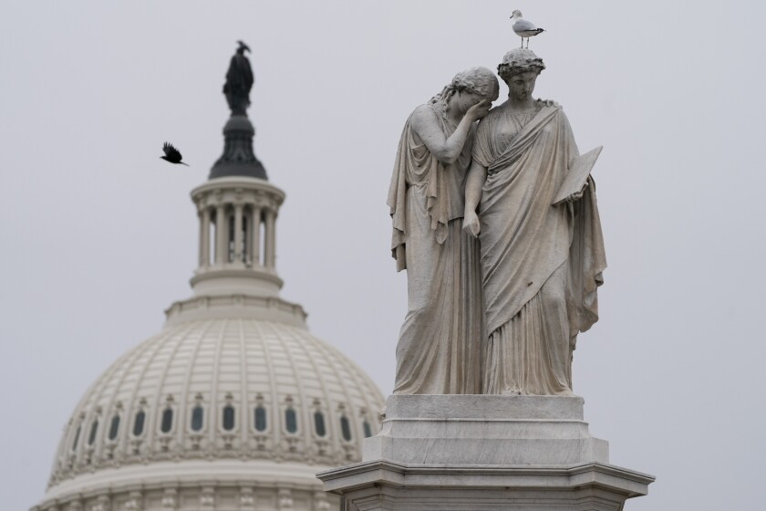 Birds fly around the Peace Monument and the Statue of Freedom atop the Capitol dome in Washington on Friday.