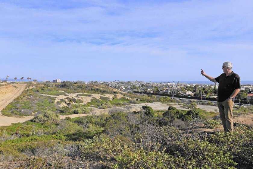 """George Basye, president of Newport Banning Ranch, looks over the expanse. A California Coastal Commission staff ecologist called the 401-acre tract one of the few """"reasonably intact wetland-bluff ecosystems"""" left on the California coast."""