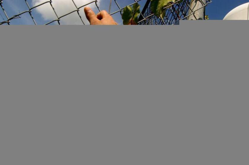 El secretario del Departamento de Corrección y Rehabilitación (DCR) de Puerto Rico, Einar Ramos, anunció hoy la certificación de la primera cooperativa de confinadas en Latinoamérica, como parte de los programas de rehabilitación para impulsar el emprendimiento entre la población correccional. EFE/ARCHIVO