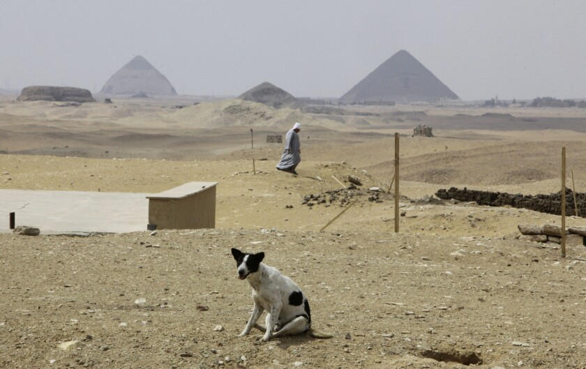A stray dog and a solitary man -- but no tourists -- near the Great Pyramid of Giza, right, and the Bent Pyramid of Dahshur, left, south of Cairo.