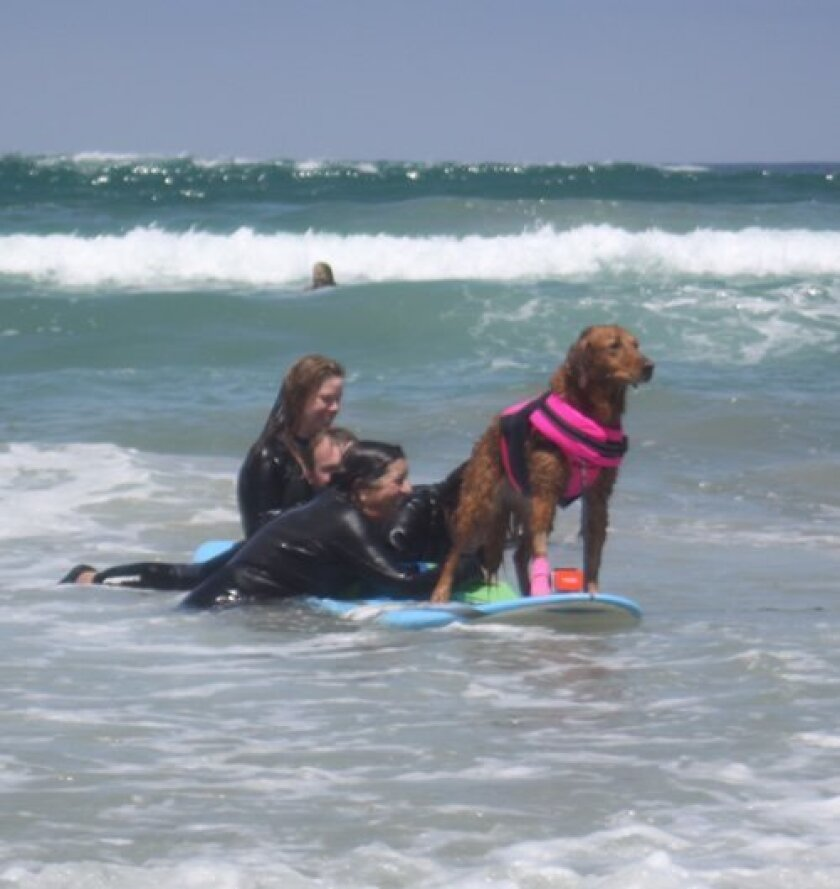 Ricochet, of course, partakes in the memorial-paddle out. Photos by Ashley Mackin