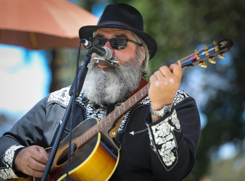 John Frazer, a co-founder of Spring Harp Fest, performs during the 20th annual festival in Harry Griffen Park.