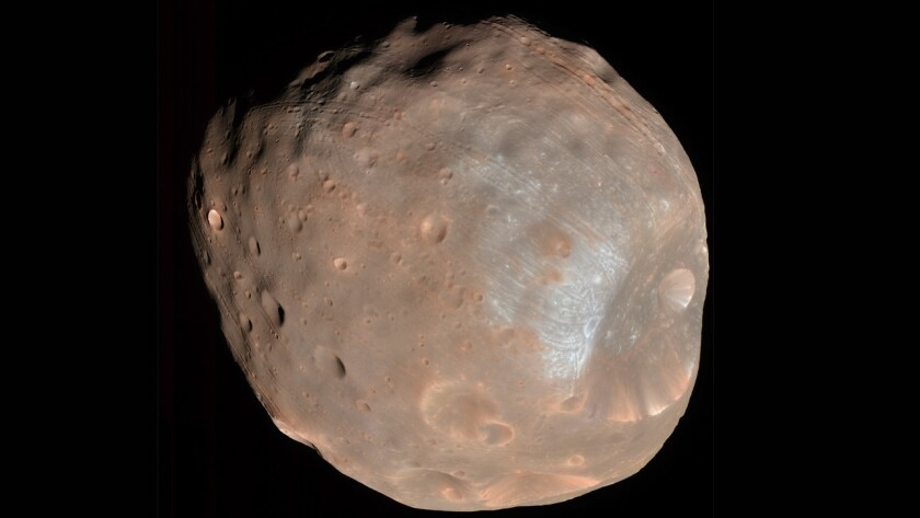 This is Phobos, a Martian moon with an unstable orbit. Scientists predict that in 20 million to 40 million years, the moon will break into pieces that will go on to form a ring around the Red Planet.