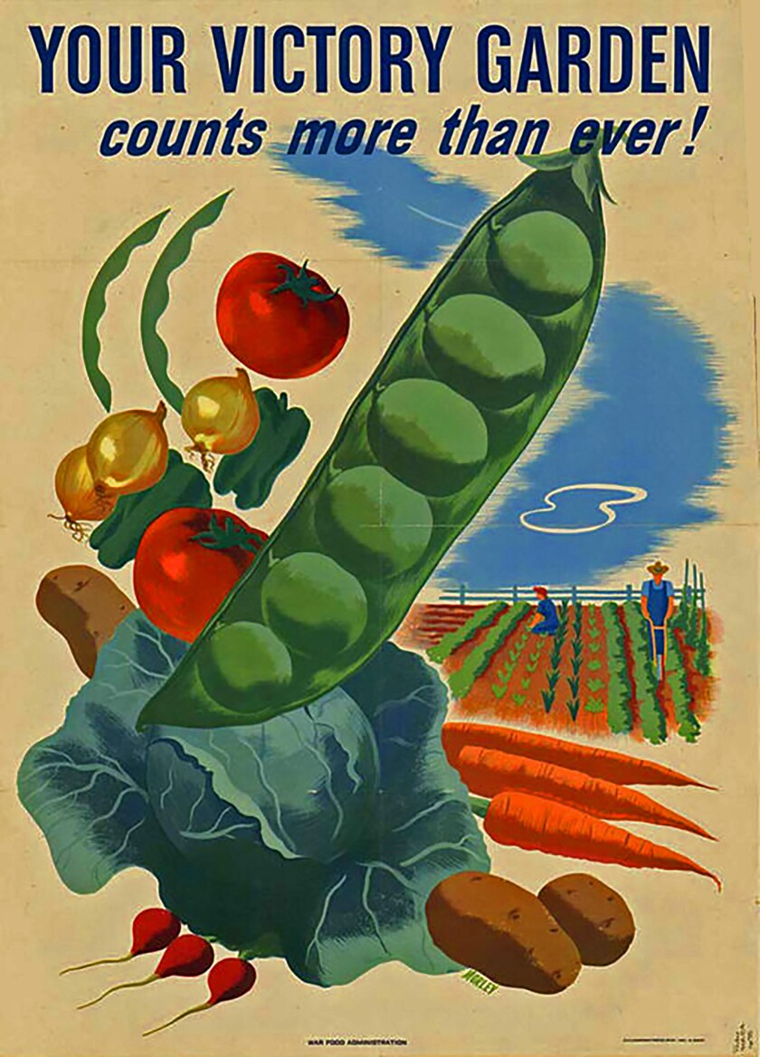 Creating a Victory Garden now can be, as it was during World Wars I and II, a shared experience during hardship and uncertainty.
