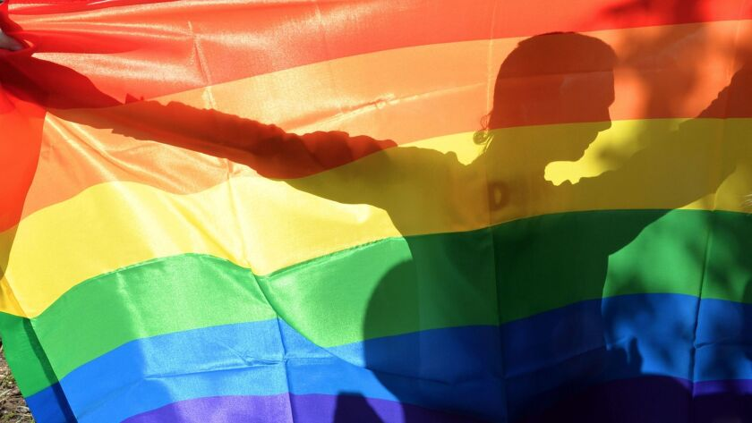 TOPSHOTS An activist's silhouette is seen through a rainbow flag during a Gay Parade in Kiev on May