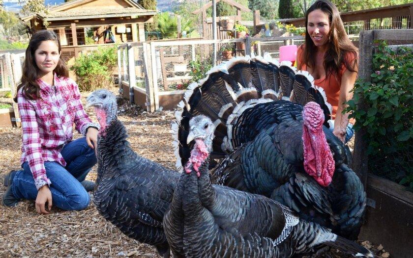 Sissy Sugarman (left) and Elizabeth Sugarman stand behind American heritage turkeys they've raised this year at their backyard farm, called Sugar Sweet Farm.