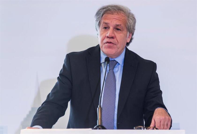 """El secretario general de la Organización de Estados Americanos, OEA, Luis Almagro, felicitó hoy al presidente electo de Colombia, Iván Duque, y puso a su disposición al organismo continental para """"consolidar la paz"""" en el país andino. EFE/ARCHIVO"""