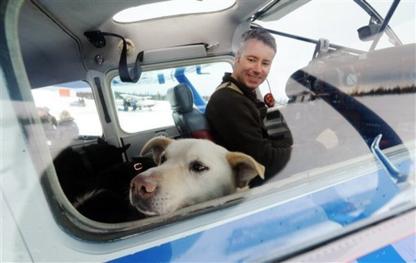Iditarod Air Force pilot Scott Ivany prepares to take off with a load of dropped dogs in his Cessna 185 during the Iditarod Trail Sled Dog Race, Wednesday, March 6, 2013, at Nikolai Airport in Nikolai, Alaska. (AP Photo/The Anchorage Daily News, Bill Roth)  LOCAL TV OUT (KTUU-TV, KTVA-TV) LOCAL PRI