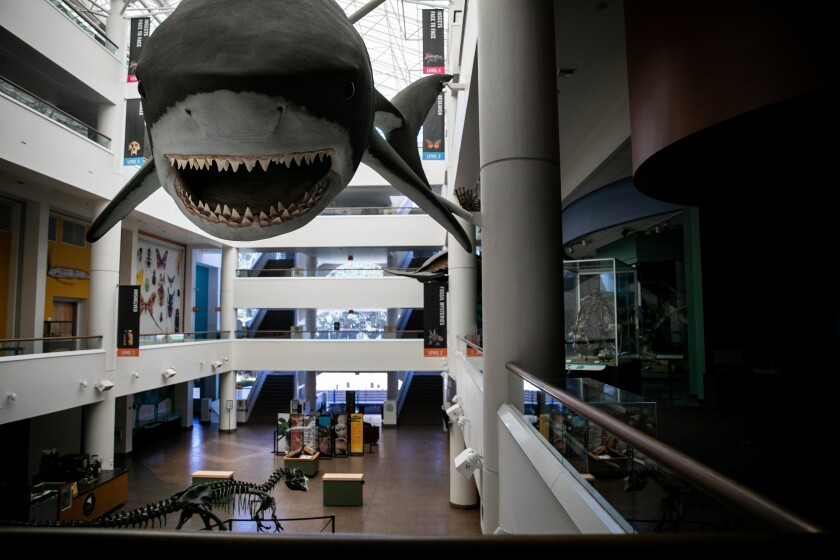 The San Diego Natural History Museum sits empty on Friday due to the COVID-19 pandemic.