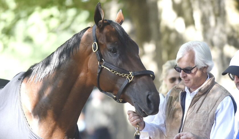 Trainer Bob Baffert holds Triple Crown winner American Pharoah after a workout at Saratoga Race Course on Friday.