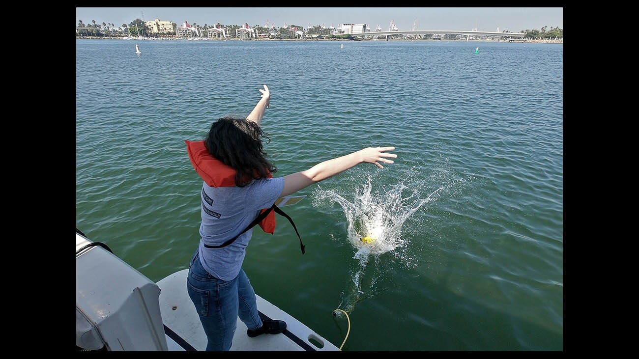 Photo Gallery: Clark Magnet High School Environmental Geographic Information Science students do research at the mouth of the L.A. River