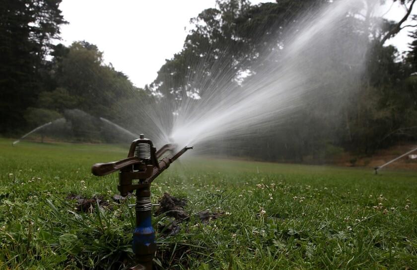 Sprinklers water lawn in Golden Gate Park