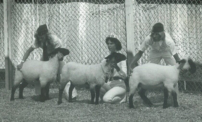 Sonja Steiner, center, was a member of the Ramona Stars 4-H Club while growing up.