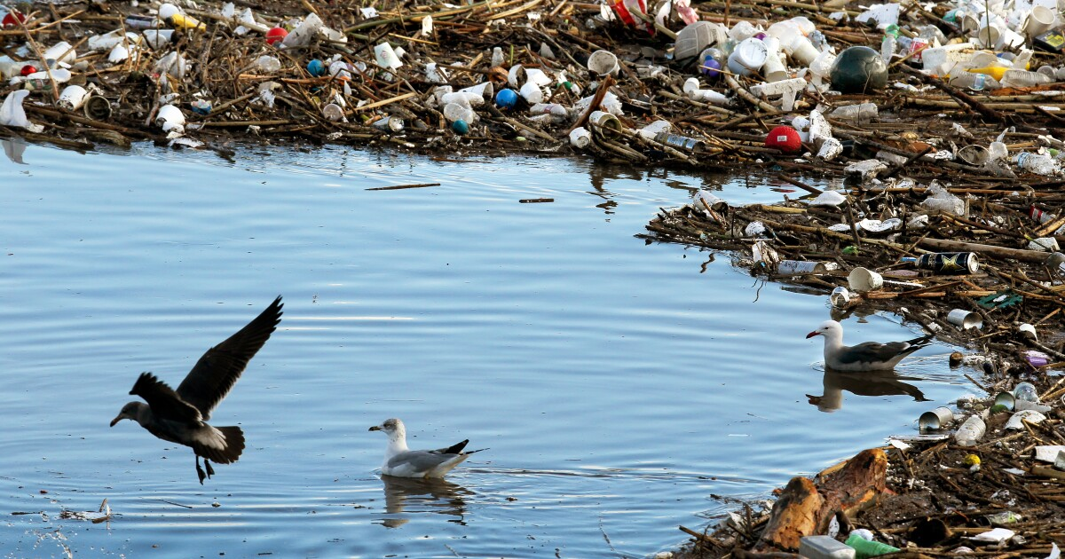 Group sues to hold Coca-Cola, Pepsi and others liable for plastics fouling California waters