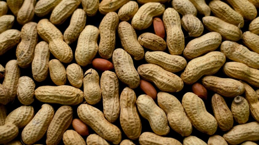 Some people have life-threatening reactions if exposed to peanuts.